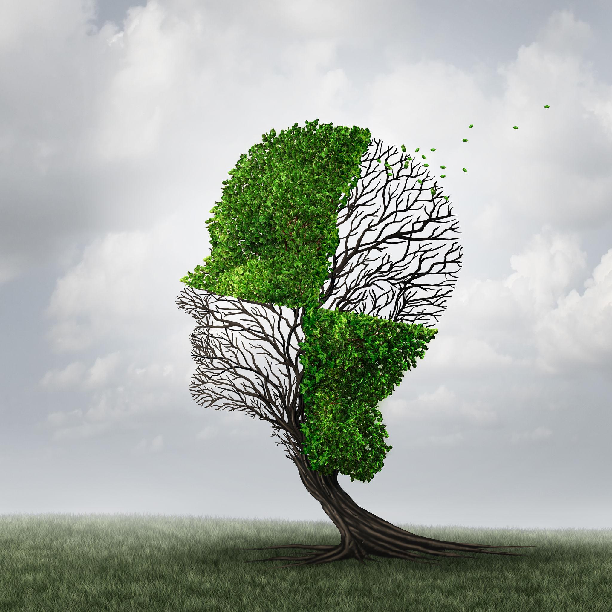 Fenomenologia procesu neurotycznego w ujęciu jungowskim